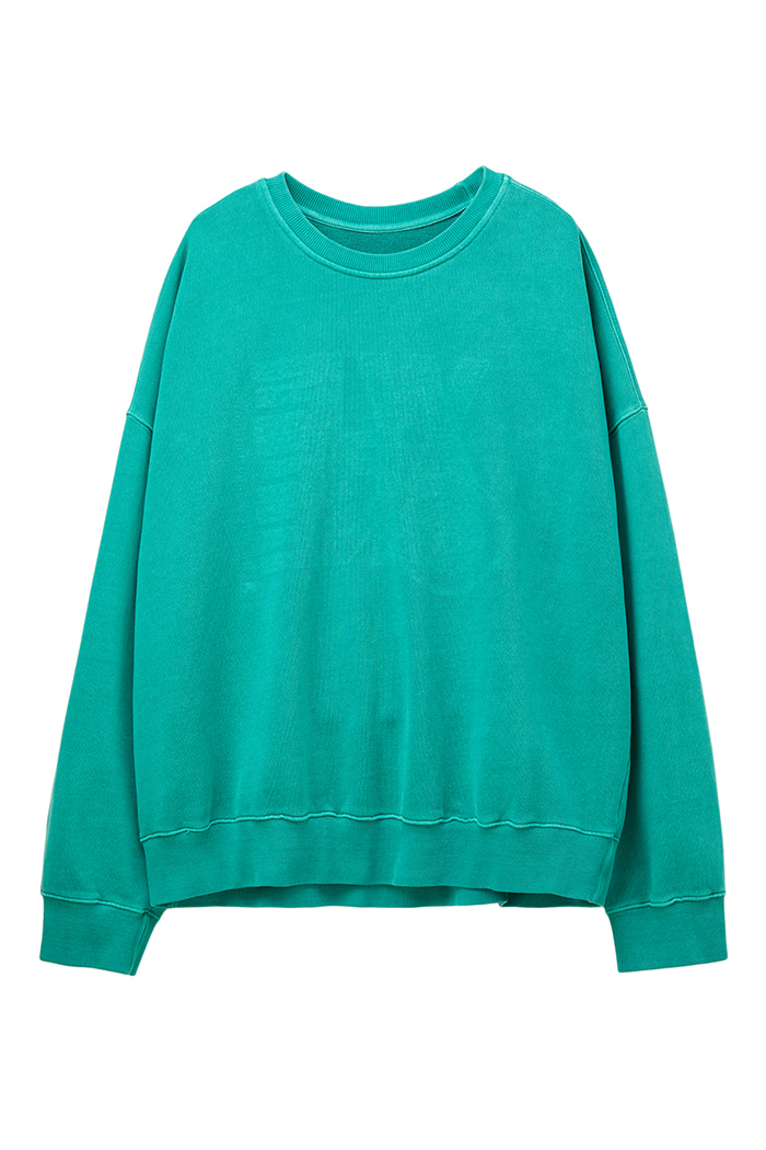 REVERSIBLE GARMENT-DYED SWEATSHIRT_green